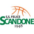 Logo Felice Scandone Avellino