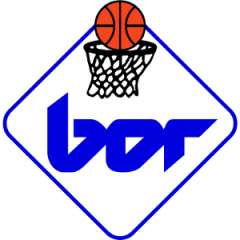 Logo P. Bor Radenska