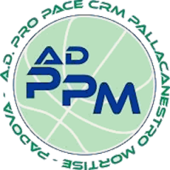 Logo Pro Pace CRM Mortise