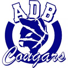 Logo B. Basket Vercurago