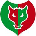 Logo Fulgor Omegna