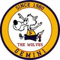 Logo Gemini S.G.Lupatoto