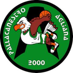 Logo Pall. Agliana 2000