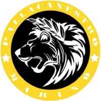 Logo Nova Basket Boville