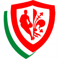 Logo Pino Dragons Basket Firenze