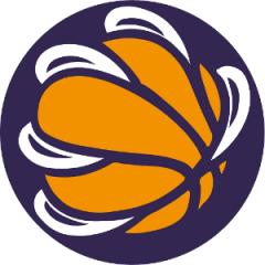 Logo Mestrino