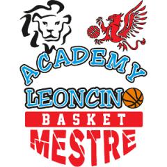 Logo Leoncino Mestre Academy