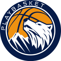 Logo Playbasket Carrè