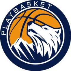 Logo Playbasket Carrè
