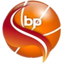 Logo Scuola Basket Polesine