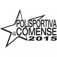 Logo Pol2015 Comense
