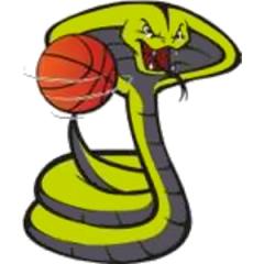 Logo Berica Basket School