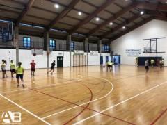 Definiti i gruppi e i tecnici che guideranno le squadre giovanili dell'Alpo Basket