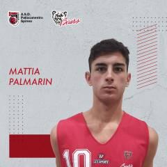 Mattia Palmarin sarà un giocatore della Pallacanestro Bears Spinea per la terza stagione consecutiva