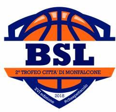 Logo XVII° Summer Basketball League